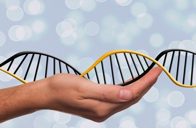 deoxyribonucleic-acid-1500076_1280